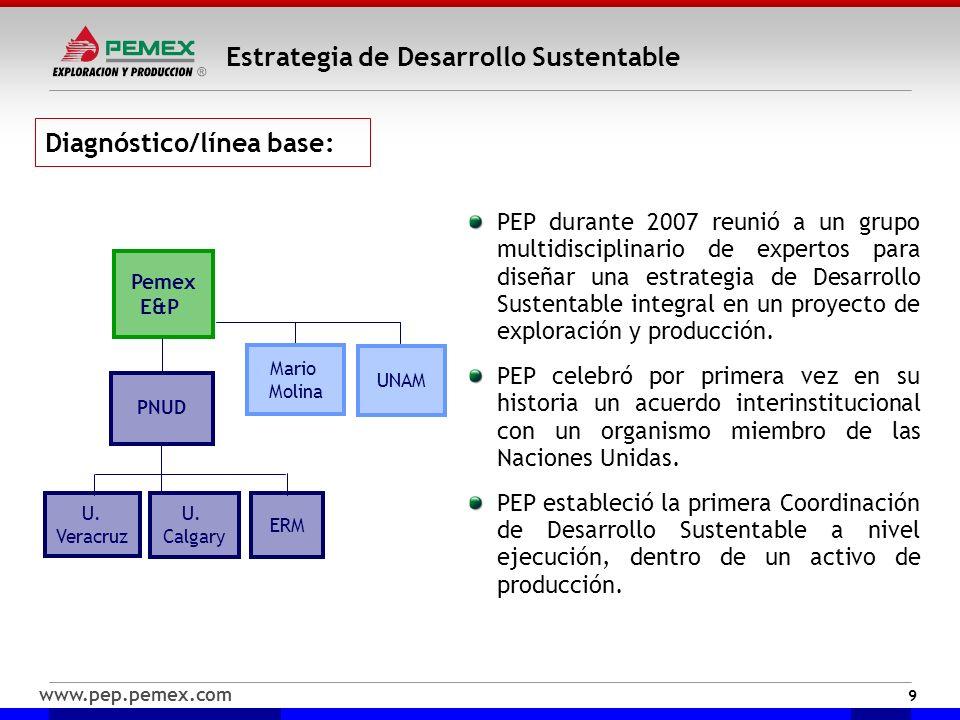 www.pep.pemex.com Estrategia de Desarrollo Sustentable Diagnóstico/línea base: PEP durante 2007 reunió a un grupo multidisciplinario de expertos para