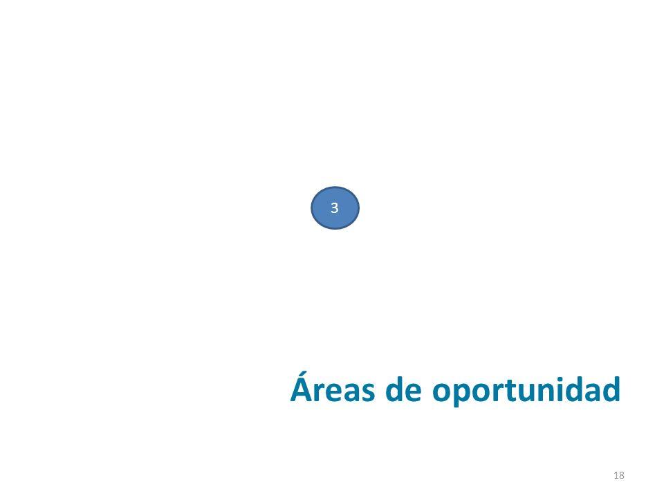 Áreas de oportunidad 3 18