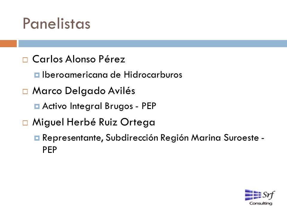 Panelistas Carlos Alonso Pérez Iberoamericana de Hidrocarburos Marco Delgado Avilés Activo Integral Brugos - PEP Miguel Herbé Ruiz Ortega Representant