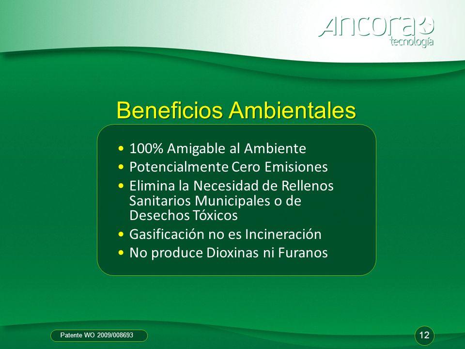 Patente WO 2009/008693 100% Amigable al Ambiente Potencialmente Cero Emisiones Elimina la Necesidad de Rellenos Sanitarios Municipales o de Desechos T