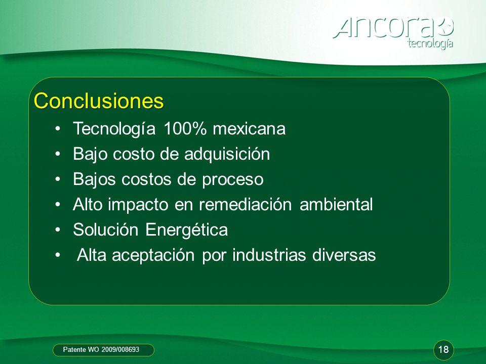 Patente WO 2009/008693 18 Conclusiones Tecnología 100% mexicana Bajo costo de adquisición Bajos costos de proceso Alto impacto en remediación ambienta