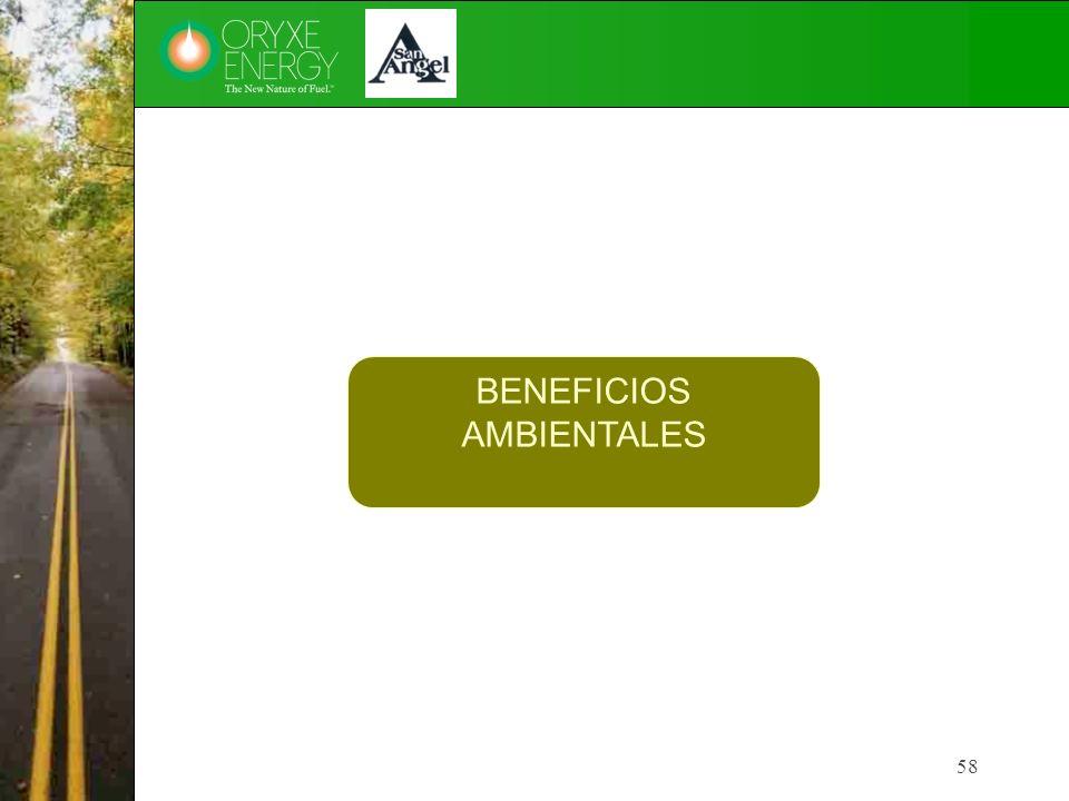 58 BENEFICIOS AMBIENTALES