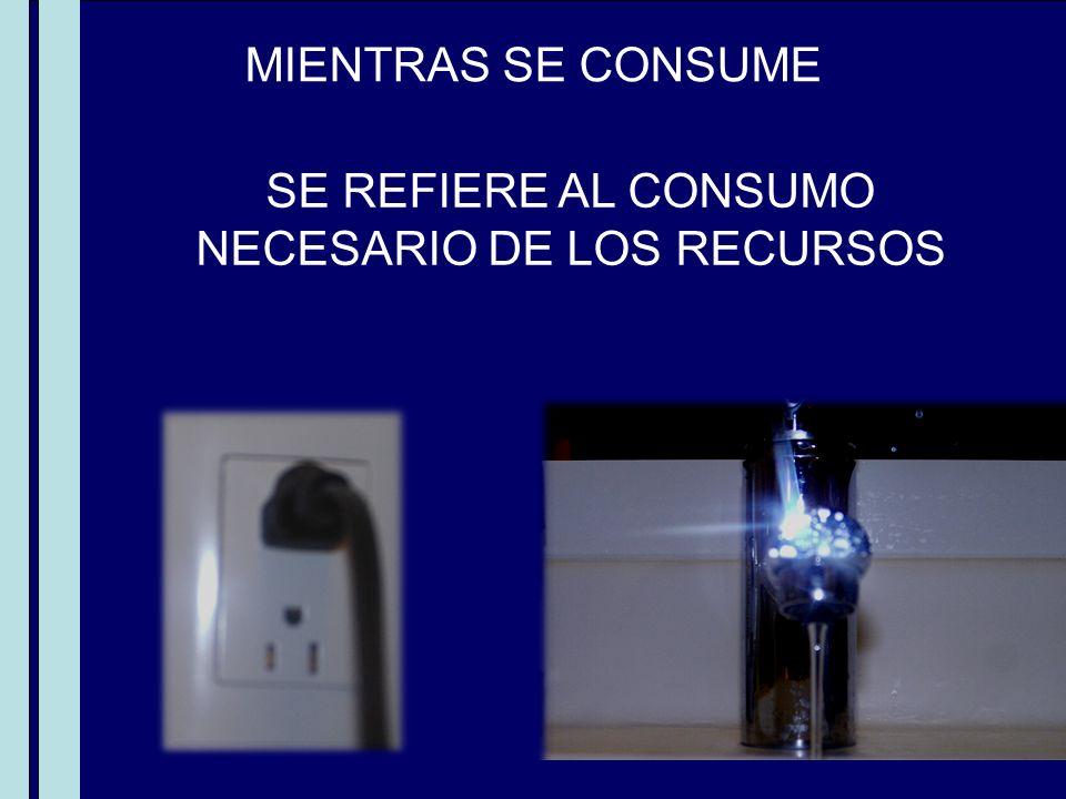 MIENTRAS SE CONSUME SE REFIERE AL CONSUMO NECESARIO DE LOS RECURSOS