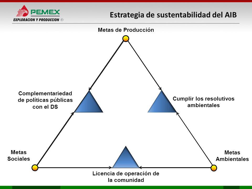 Complementariedad de políticas publicas con el DS Metas Ambientales Metas Sociales Cumplir los resolutivos ambientales Licencia de operación de la comunidad Metas de Producción Metas Ambientales Metas Sociales Cumplir los resolutivos ambientales Licencia de operación de la comunidad Metas de Producción Plan de Acción de D.S.