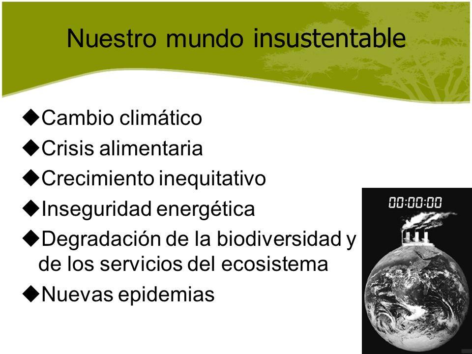 Nuestro mundo insustentable Cambio climático Crisis alimentaria Crecimiento inequitativo Inseguridad energética Degradación de la biodiversidad y de l