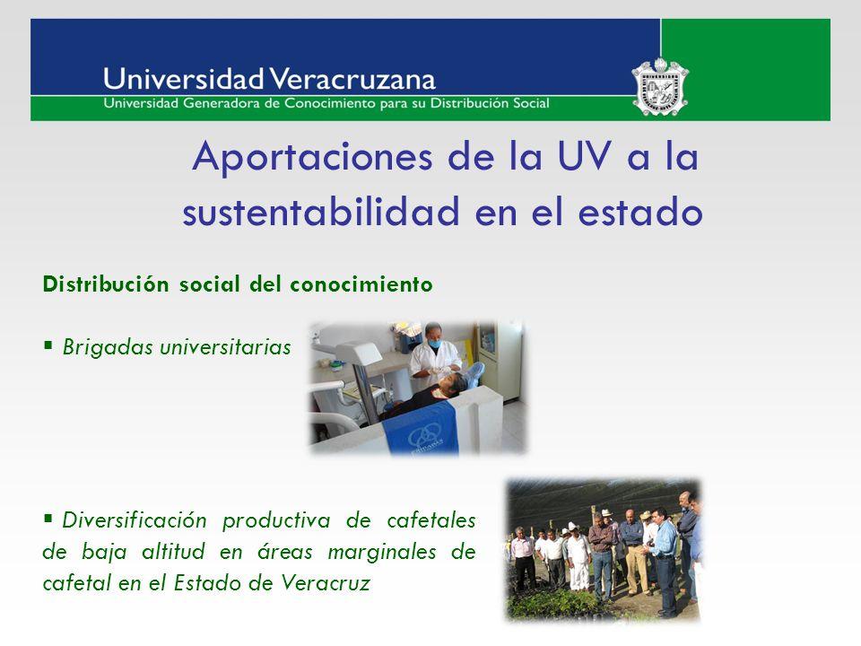 Aportaciones de la UV a la sustentabilidad en el estado Distribución social del conocimiento Brigadas universitarias Diversificación productiva de caf