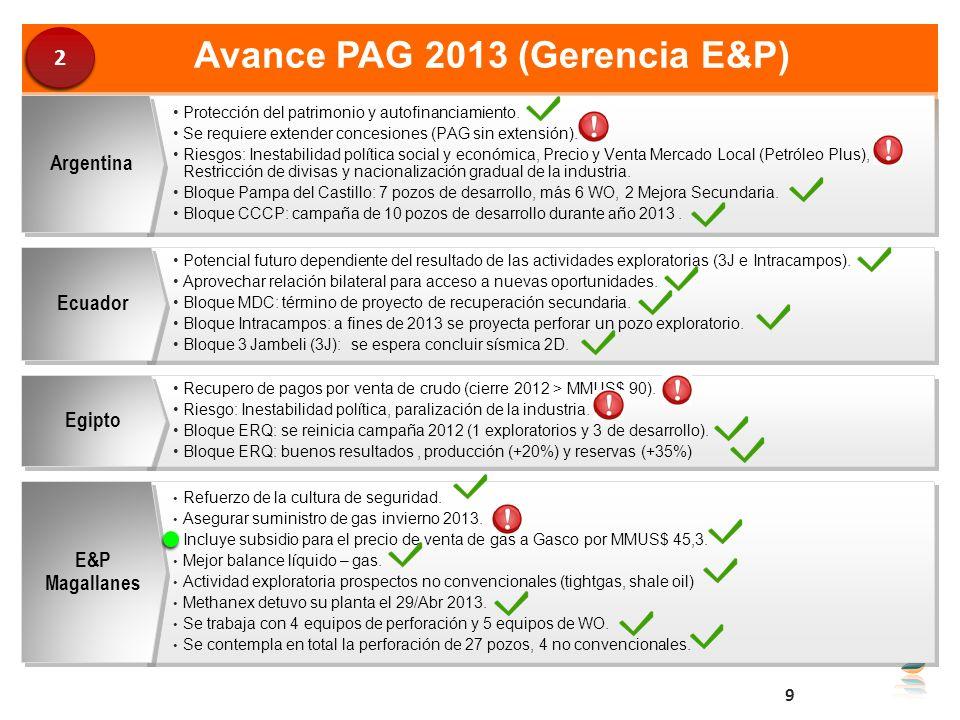 Avance PAG 2013 (Gerencia E&P) Protección del patrimonio y autofinanciamiento. Se requiere extender concesiones (PAG sin extensión). Riesgos: Inestabi