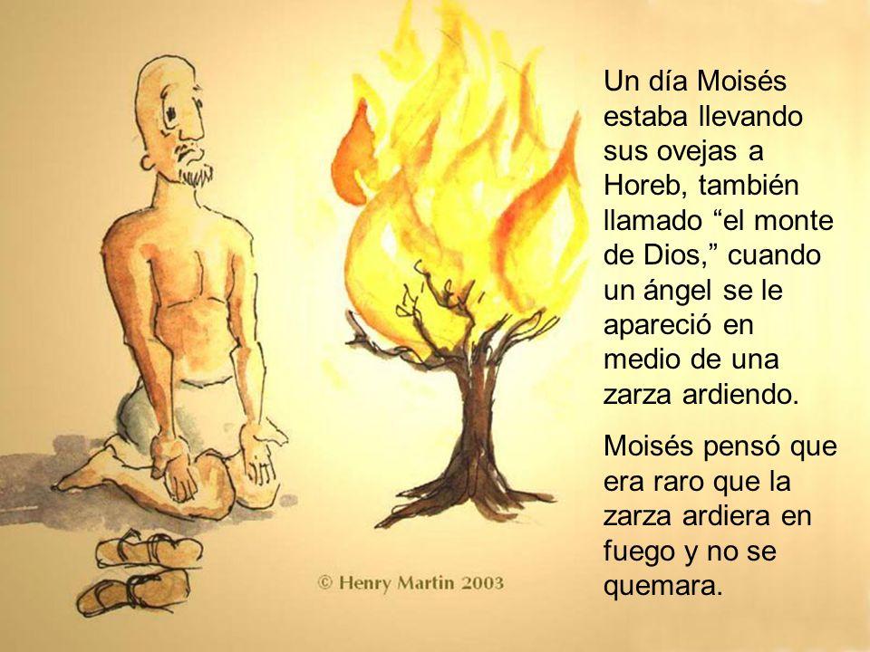 Un día Moisés estaba llevando sus ovejas a Horeb, también llamado el monte de Dios, cuando un ángel se le apareció en medio de una zarza ardiendo. Moi