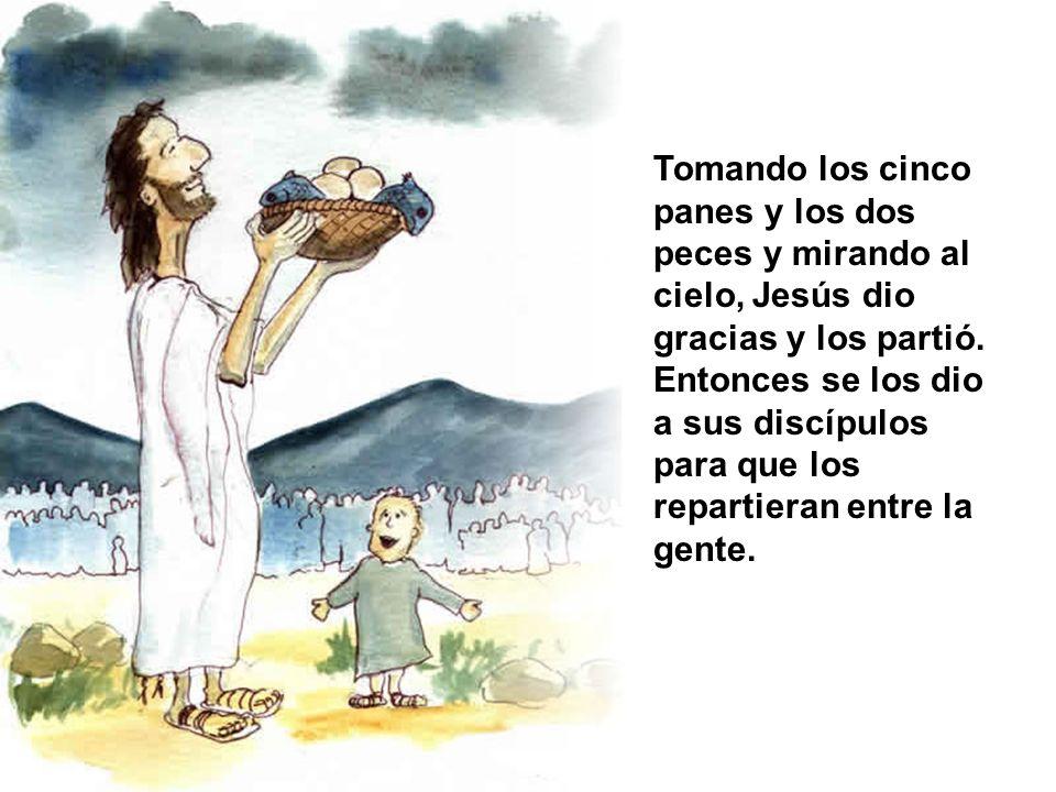 Tomando los cinco panes y los dos peces y mirando al cielo, Jesús dio gracias y los partió. Entonces se los dio a sus discípulos para que los repartie
