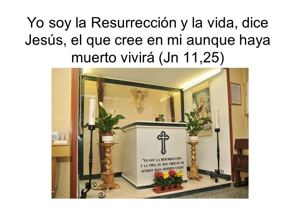 Yo soy la Resurrección y la vida, dice Jesús, el que cree en mi aunque haya muerto vivirá (Jn 11,25)