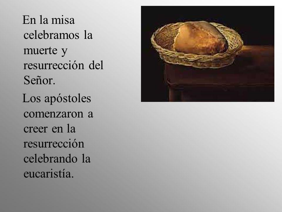 En la misa celebramos la muerte y resurrección del Señor. Los apóstoles comenzaron a creer en la resurrección celebrando la eucaristía.