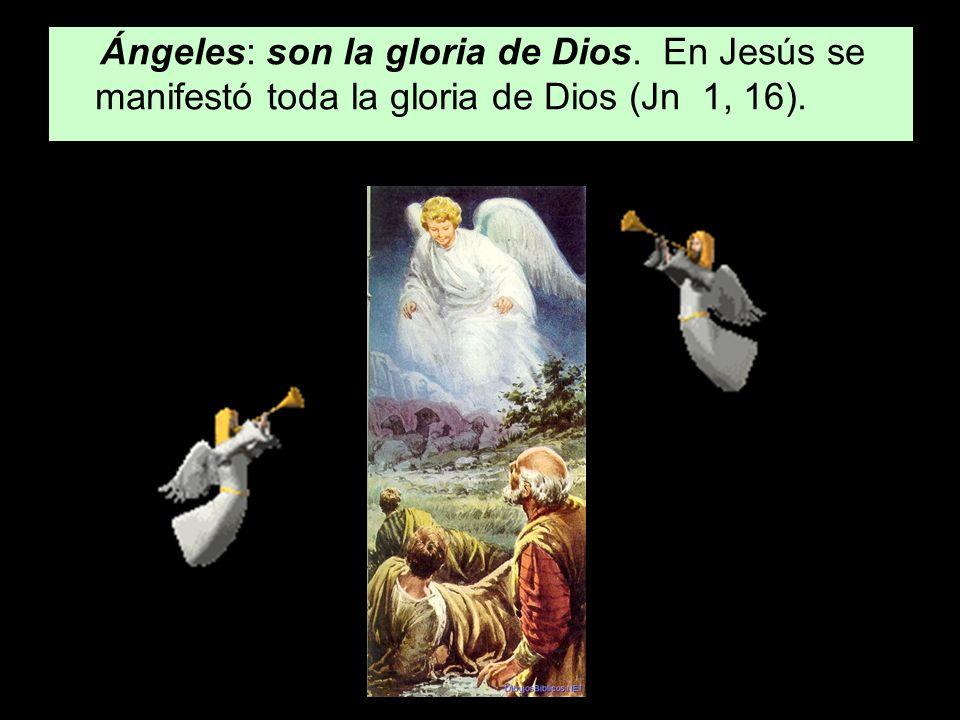 Ángeles: son la gloria de Dios. En Jesús se manifestó toda la gloria de Dios (Jn 1, 16).