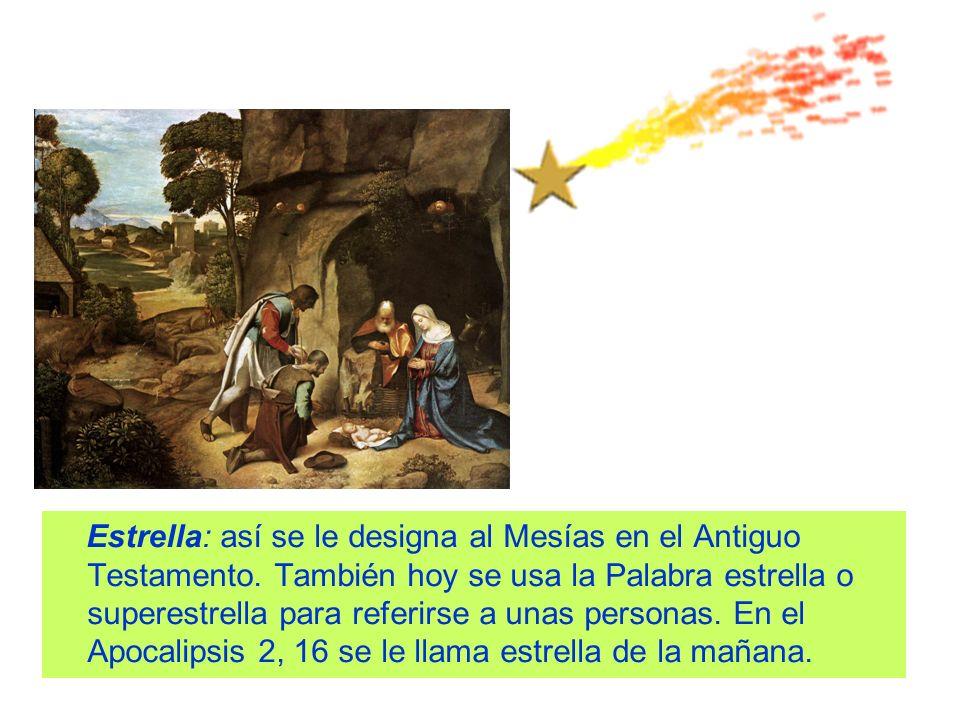 Estrella: así se le designa al Mesías en el Antiguo Testamento. También hoy se usa la Palabra estrella o superestrella para referirse a unas personas.