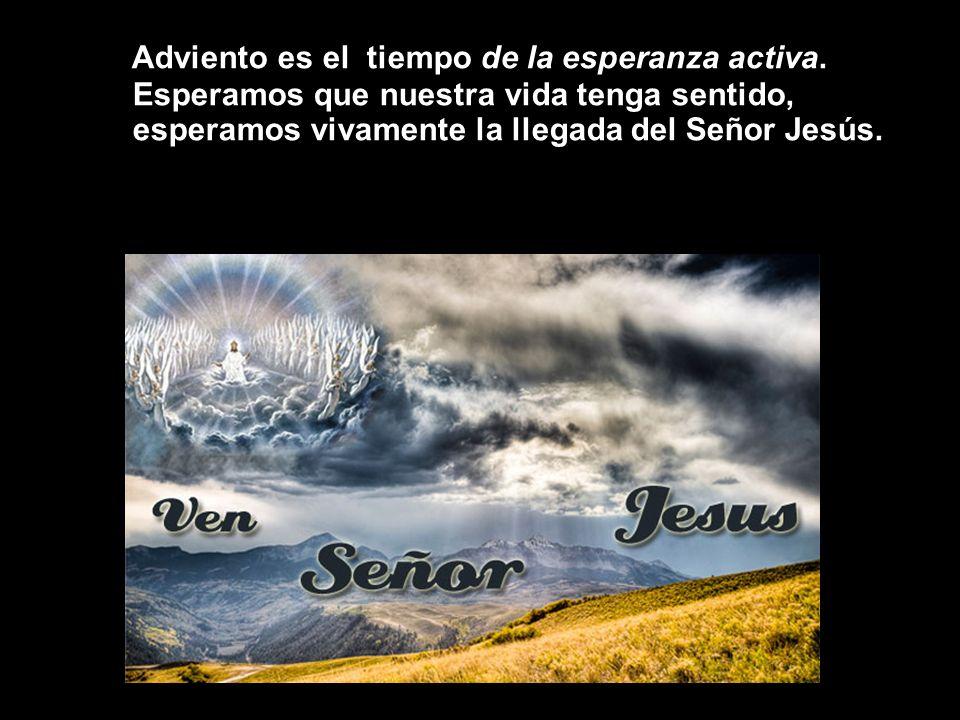 Adviento es el tiempo de la esperanza activa. Esperamos que nuestra vida tenga sentido, esperamos vivamente la llegada del Señor Jesús.