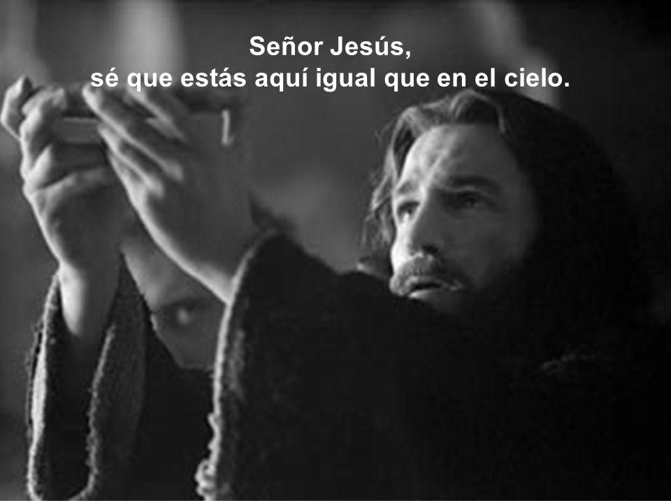 Señor Jesús, sé que estás aquí igual que en el cielo.