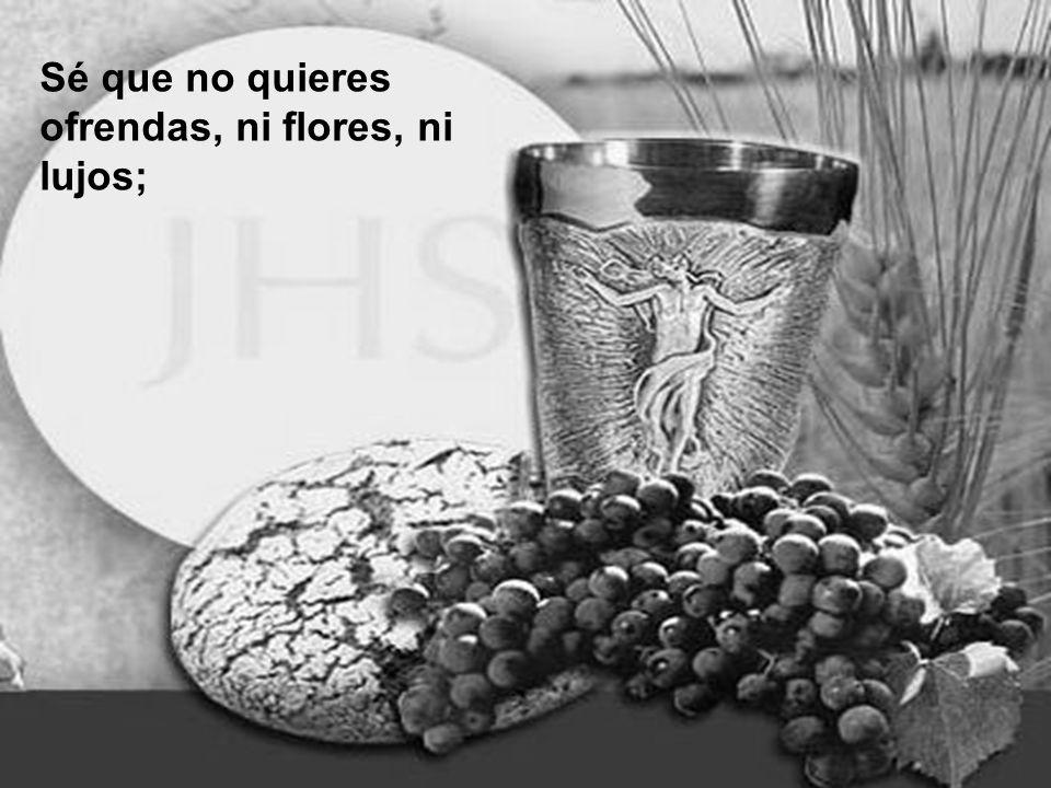 Sé que no quieres ofrendas, ni flores, ni lujos;