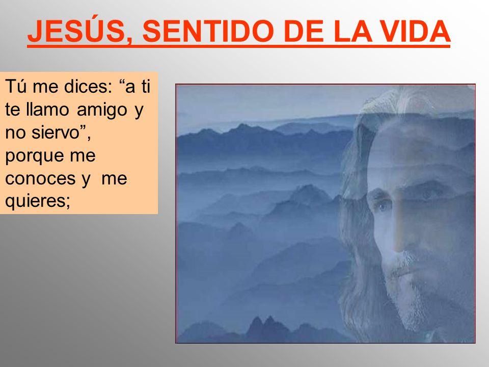 Tú me dices: a ti te llamo amigo y no siervo, porque me conoces y me quieres; JESÚS, SENTIDO DE LA VIDA