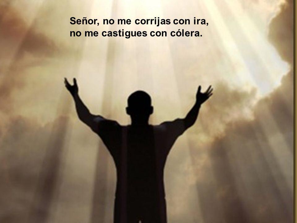 Misericordia, Señor, que desfallezco; cura, Señor, mis huesos dislocados.