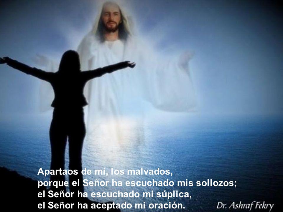 Apartaos de mí, los malvados, porque el Señor ha escuchado mis sollozos; el Señor ha escuchado mi súplica, el Señor ha aceptado mi oración.