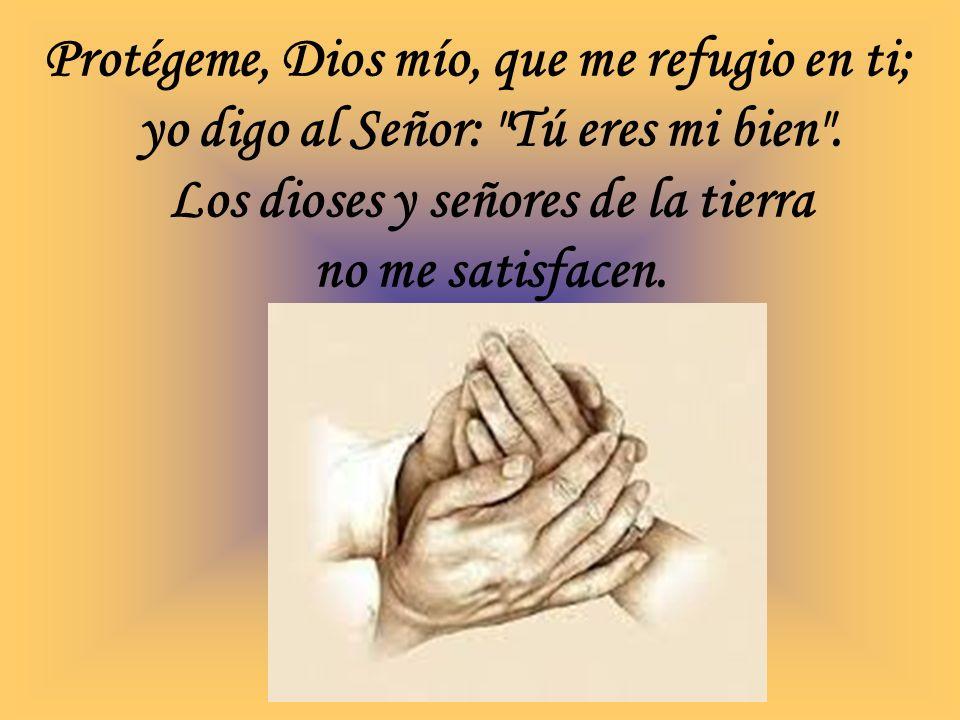 Protégeme, Dios mío, que me refugio en ti; yo digo al Señor: