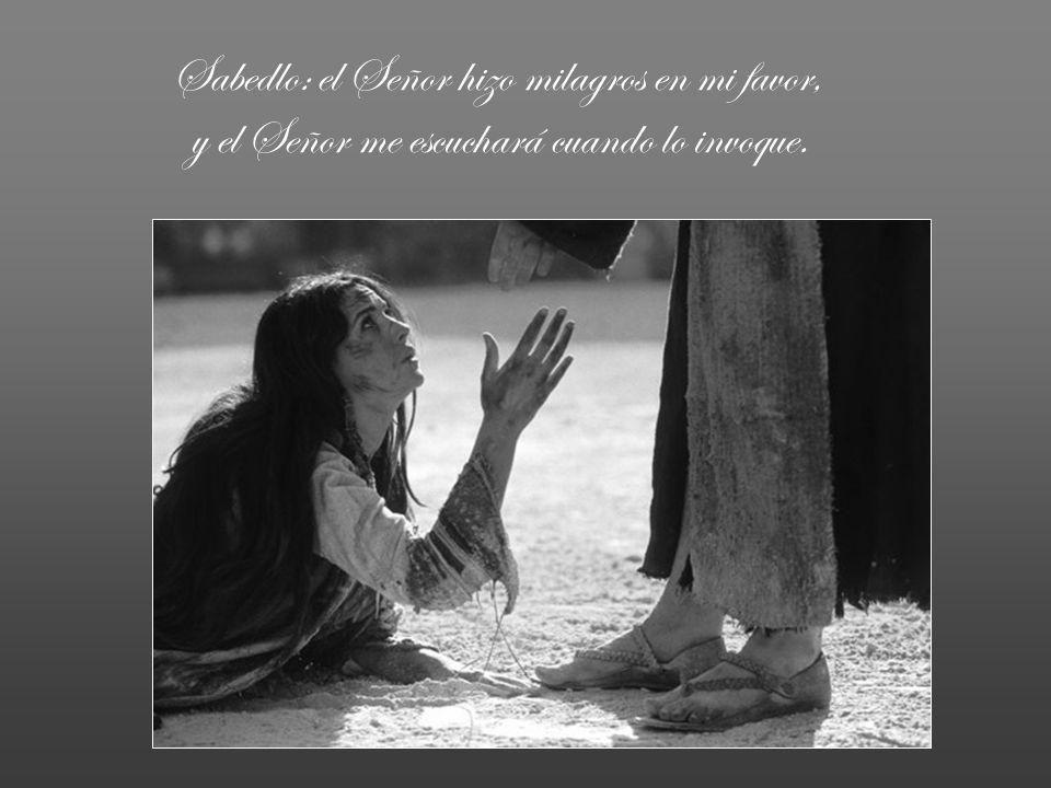 Temblad y no pequéis, reflexionad en el silencio de vuestro lecho; ofreced sacrificios legítimos y confiad en el Señor.