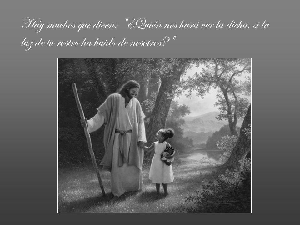 Pero tú, Señor, has puesto en mi corazón más alegría que si abundara en trigo y en vino.
