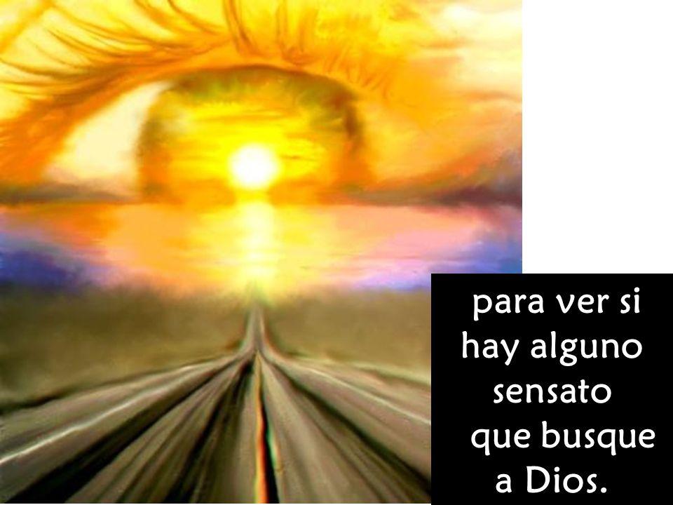 para ver si hay alguno sensato que busque a Dios.
