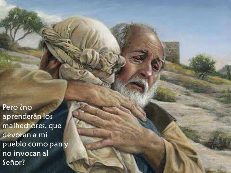 Pero ¿no aprenderán los malhechores, que devoran a mi pueblo como pan y no invocan al Señor?