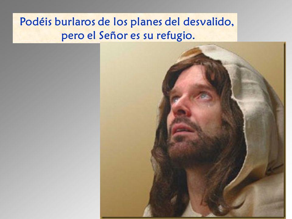 Podéis burlaros de los planes del desvalido, pero el Señor es su refugio.