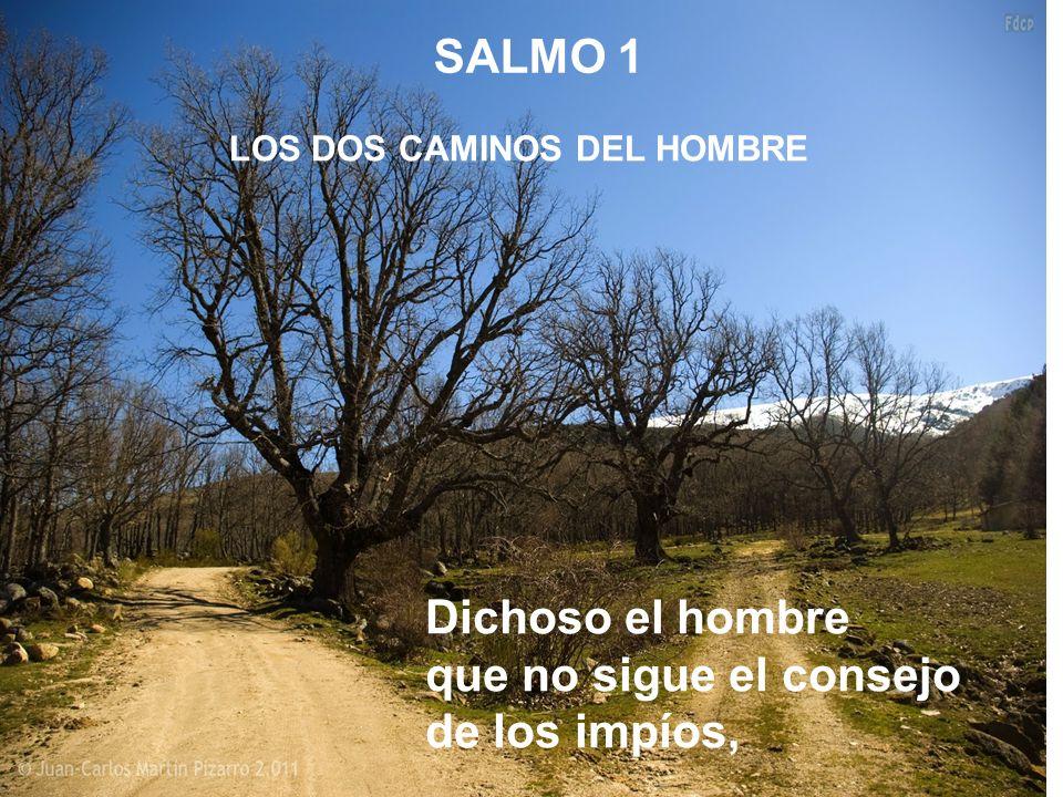 LOS DOS CAMINOS DEL HOMBRE SALMO 1 Dichoso el hombre que no sigue el consejo de los impíos,