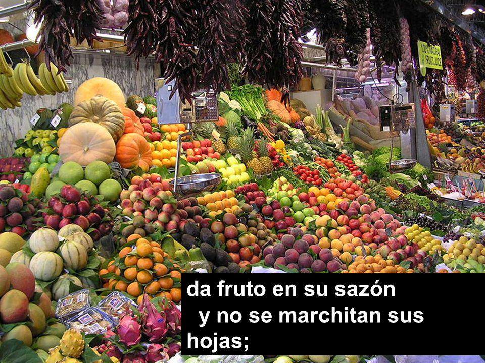da fruto en su sazón y no se marchitan sus hojas;