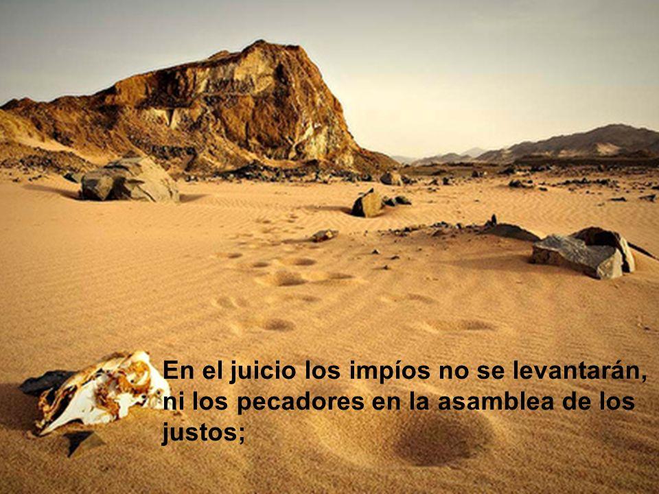 En el juicio los impíos no se levantarán, ni los pecadores en la asamblea de los justos;