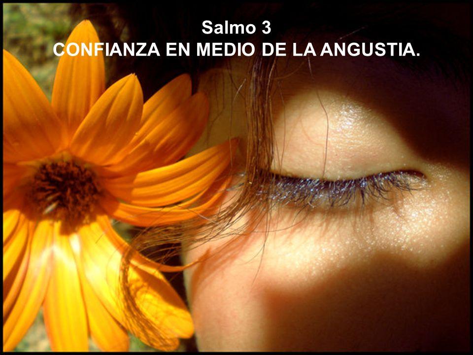 Salmo 3 CONFIANZA EN MEDIO DE LA ANGUSTIA.
