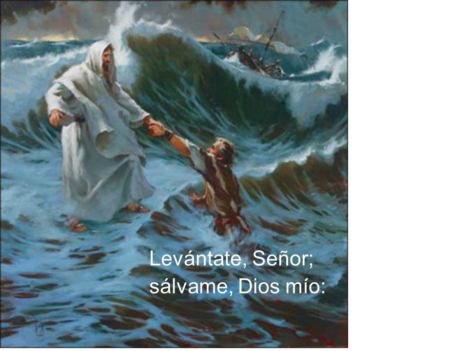 Levántate, Señor; sálvame, Dios mío: