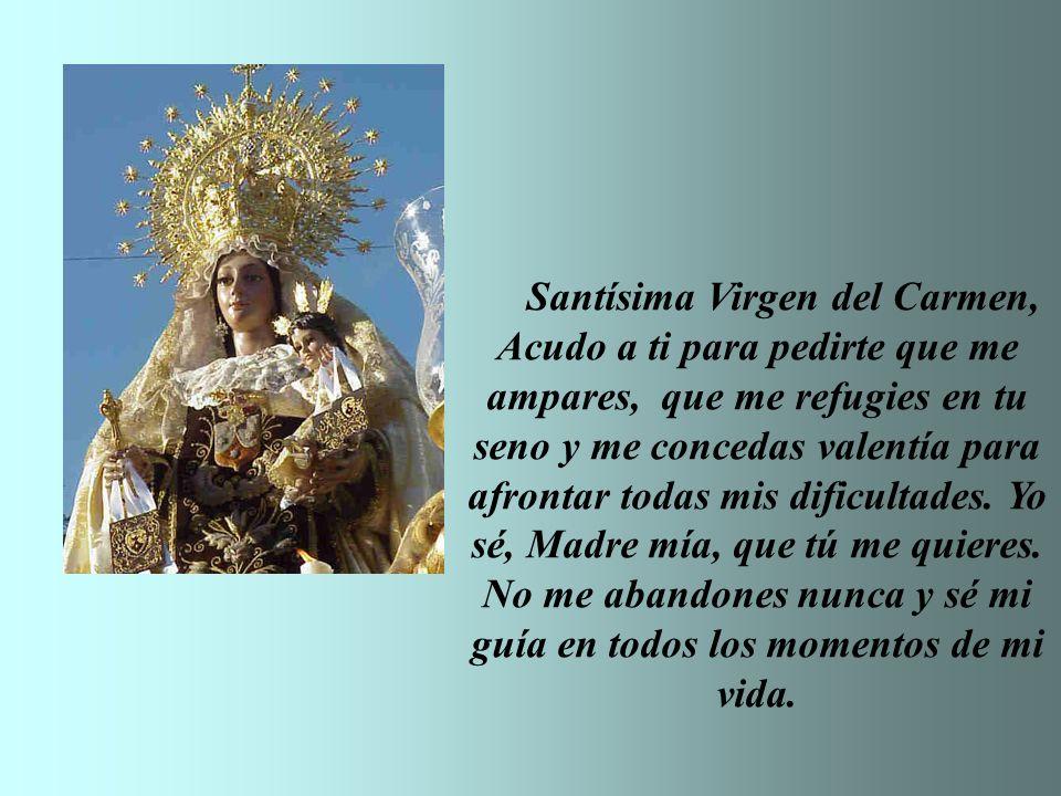 Santísima Virgen del Carmen, Acudo a ti para pedirte que me ampares, que me refugies en tu seno y me concedas valentía para afrontar todas mis dificultades.