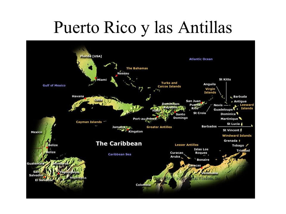 Puerto Rico y las Antillas Mayores Map appears courtesy of Mountain High Maps® Copyright © 1933 Digital Wisdom, Inc