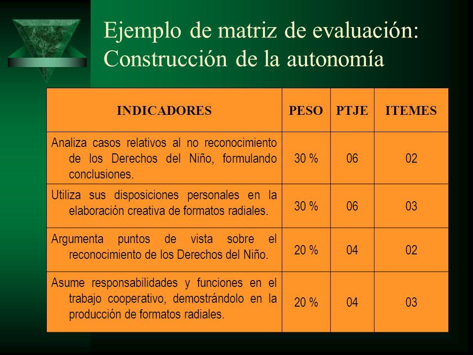 Precisiones sobre instrumentos y reactivos 1.Un instrumento puede referirse a más de una capacidad de área.