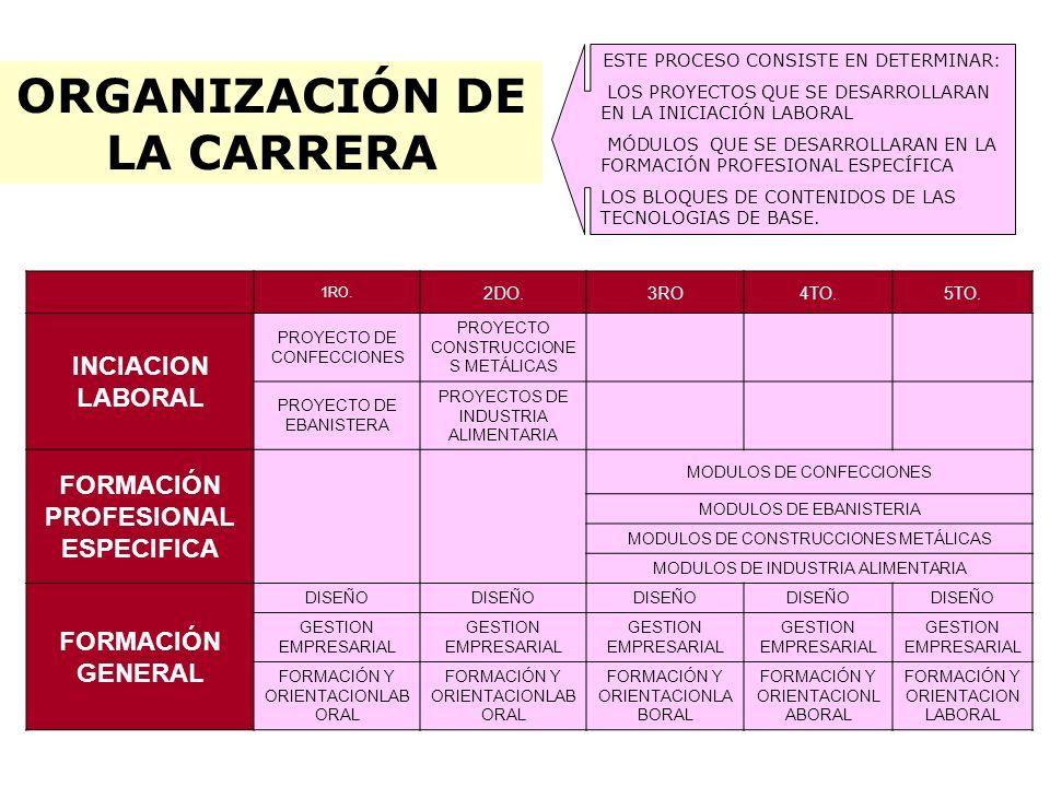 ORGANIZACIÓN DE LA CARRERA ESTE PROCESO CONSISTE EN DETERMINAR: LOS PROYECTOS QUE SE DESARROLLARAN EN LA INICIACIÓN LABORAL MÓDULOS QUE SE DESARROLLAR