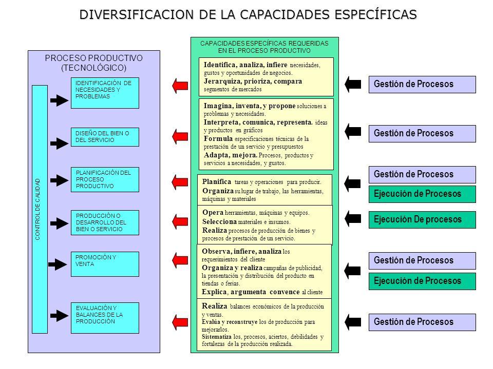 DIVERSIFICACION DE LA CAPACIDADES ESPECÍFICAS CAPACIDADES ESPECÍFICAS REQUERIDAS EN EL PROCESO PRODUCTIVO PROCESO PRODUCTIVO (TECNOLÓGICO) IDENTIFICAC