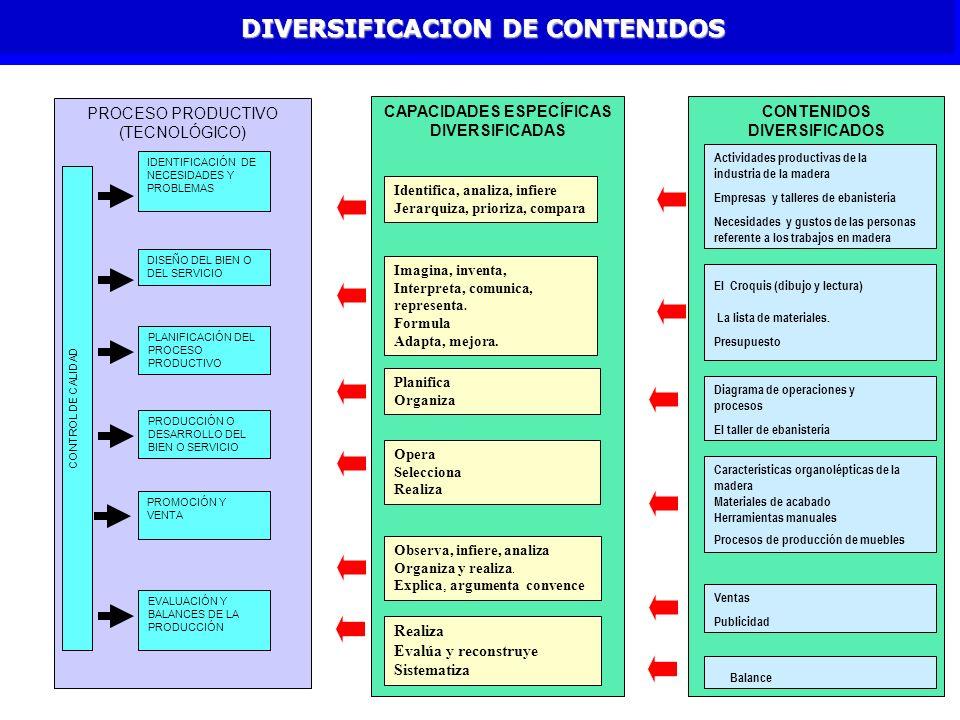 CONTENIDOS DIVERSIFICADOS DIVERSIFICACION DE CONTENIDOS CAPACIDADES ESPECÍFICAS DIVERSIFICADAS PROCESO PRODUCTIVO (TECNOLÓGICO) IDENTIFICACIÓN DE NECE