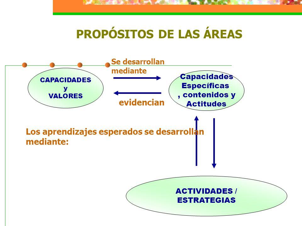 CAPACIDADES y VALORES Capacidades Específicas, contenidos y Actitudes ACTIVIDADES / ESTRATEGIAS Los aprendizajes esperados se desarrollan mediante: Se