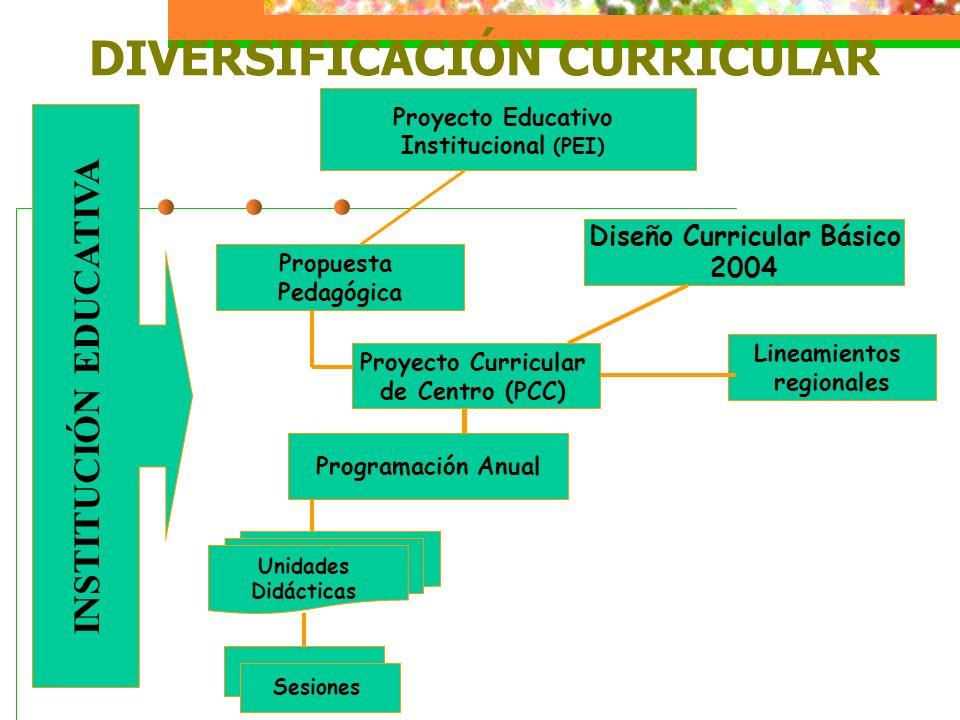 DIVERSIFICACIÓN CURRICULAR Programación Anual Proyecto Curricular de Centro (PCC) Propuesta Pedagógica Proyecto Educativo Institucional (PEI) INSTITUC