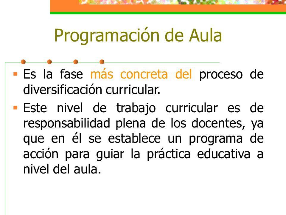 Programación de Aula Es la fase más concreta del proceso de diversificación curricular. Este nivel de trabajo curricular es de responsabilidad plena d