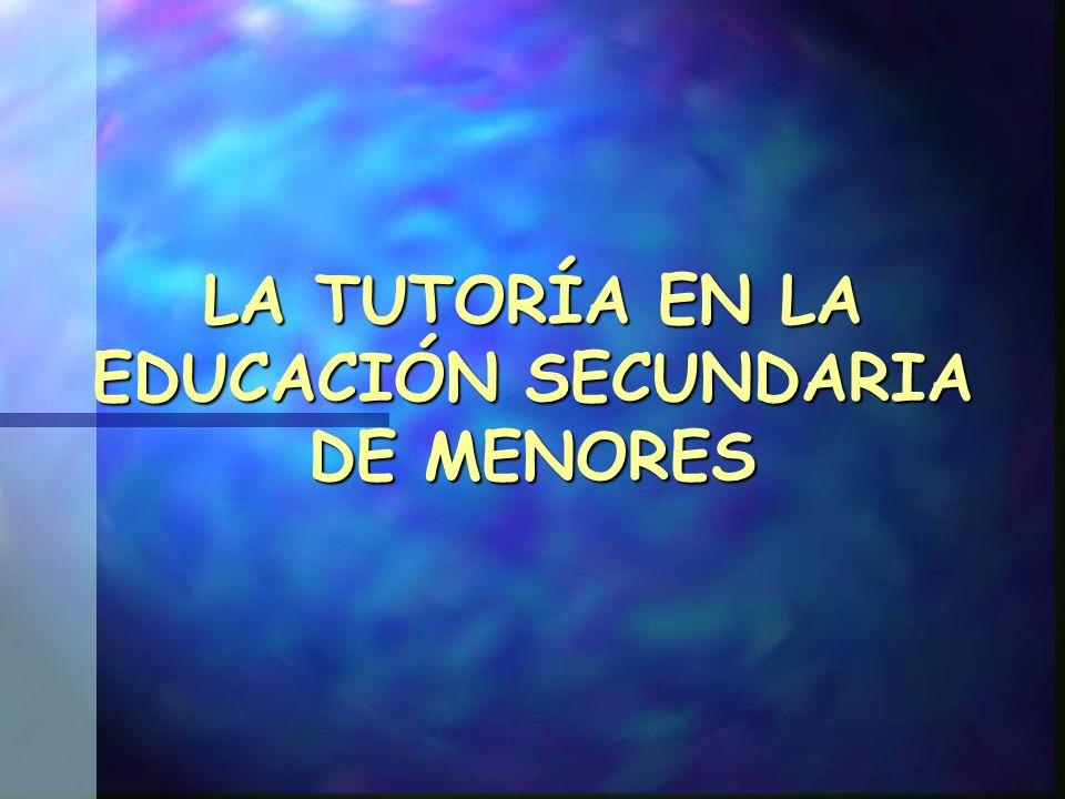 LA TUTORÍA EN LA EDUCACIÓN SECUNDARIA DE MENORES