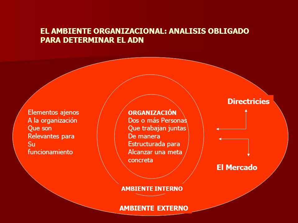 ORGANIZACIÓN Dos o más Personas Que trabajan juntas De manera Estructurada para Alcanzar una meta concreta Elementos ajenos A la organización Que son