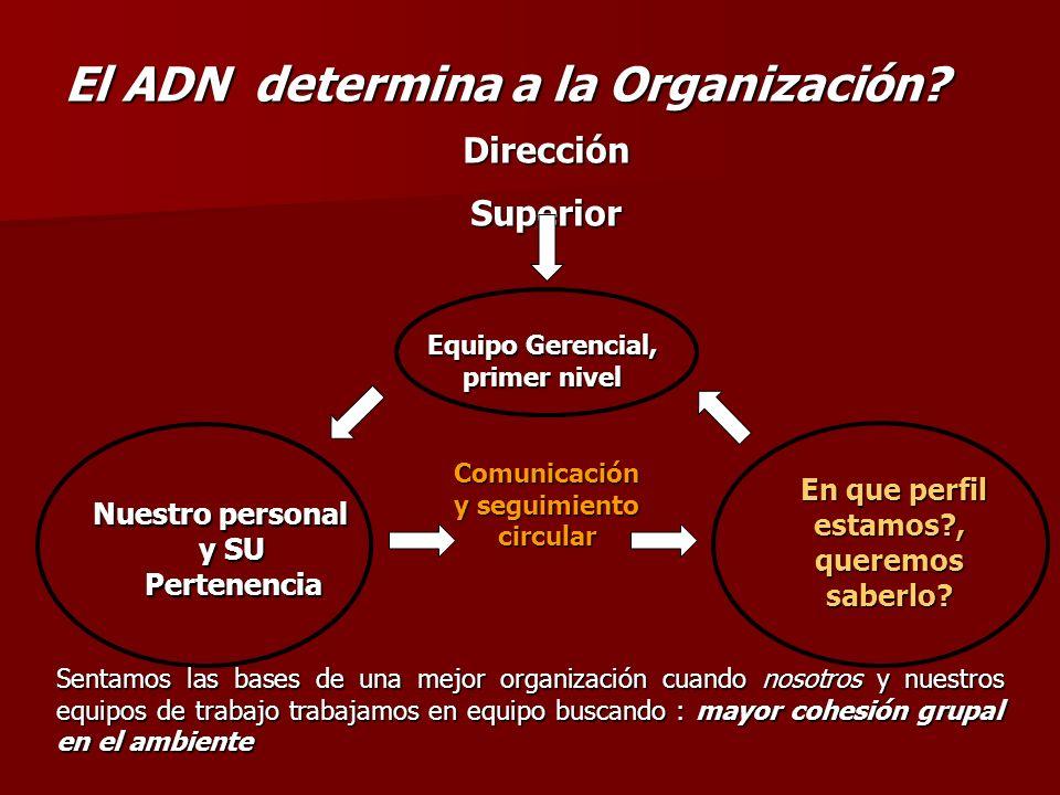 El ADN determina a la Organización? Comunicación y seguimiento circular Equipo Gerencial, primer nivel Sentamos las bases de una mejor organización cu