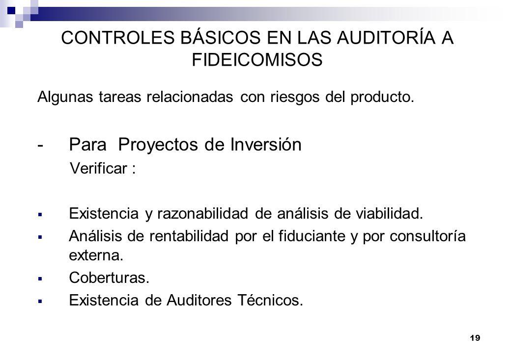 19 CONTROLES BÁSICOS EN LAS AUDITORÍA A FIDEICOMISOS Algunas tareas relacionadas con riesgos del producto. -Para Proyectos de Inversión Verificar : Ex
