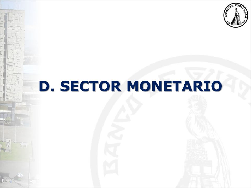 D. SECTOR MONETARIO