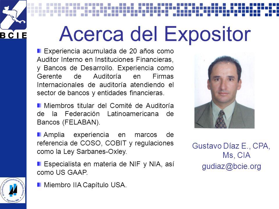 XI CLAI Argentina 2006 - Todos los derechos reservados por el Instituto de Auditores Internos de Argentina. 30 Acerca del Expositor Gustavo Díaz E., C