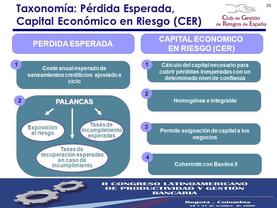23 CAPITAL ECONOMICO EN RIESGO (CER) Cálculo del capital necesario para cubrir pérdidas inesperadas con un determinado nivel de confianza 1 Taxonomía:
